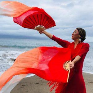 Solo Flamenco @ Presentation House Theatre
